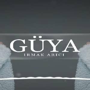 ترجمه آهنگ Irmak Arıcı Güya